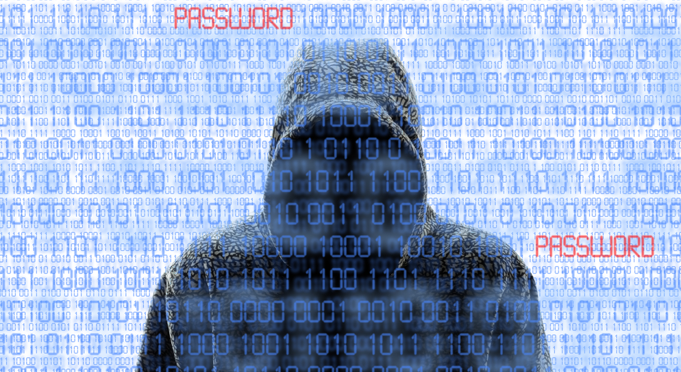 How to Avoid Business Identity Theft